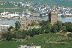Rhine Trip Burg Klopp