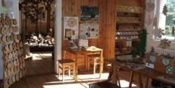 fullsize_waldmuseum_gudrun_rademacher_1