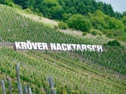 nacktarsch_02_23_14-670x502