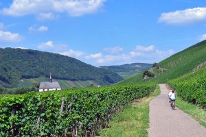 moselle-cycling-holidays